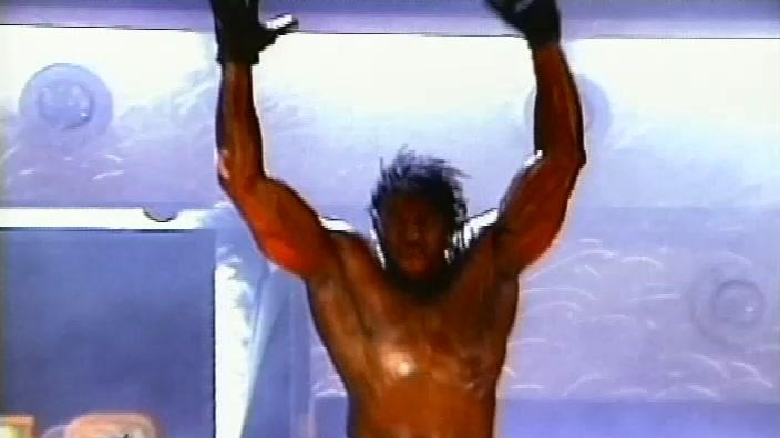 Wwe Raw 10th Anniversary