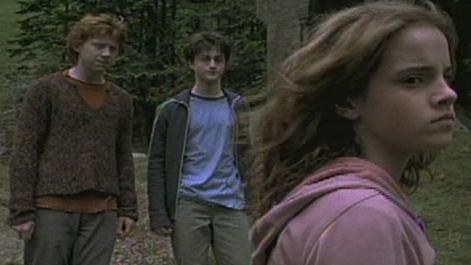 Harry Potter And The Prisoner Of Azkaban Scene: You Evil Little Cockroach
