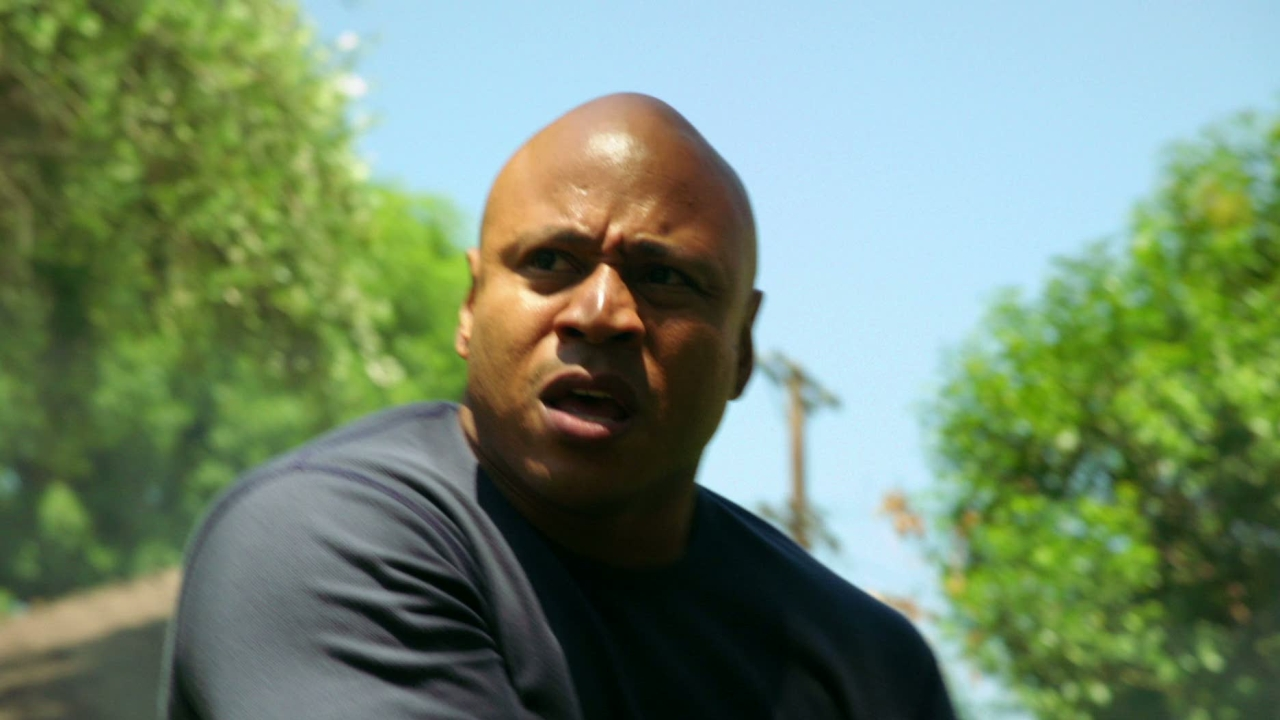 Ncis: Los Angeles: Backstopped