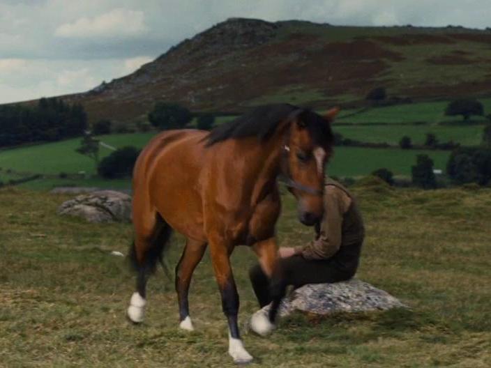 War Horse: Joey Responds To Albert's Call
