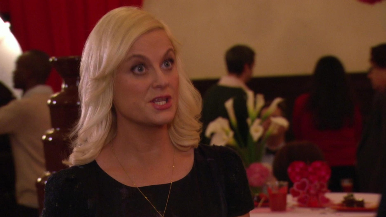 Parks And Recreation: Operation Ann
