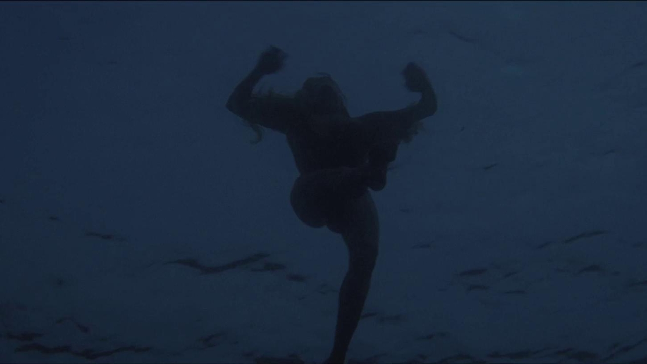 Jaws: Night Swim