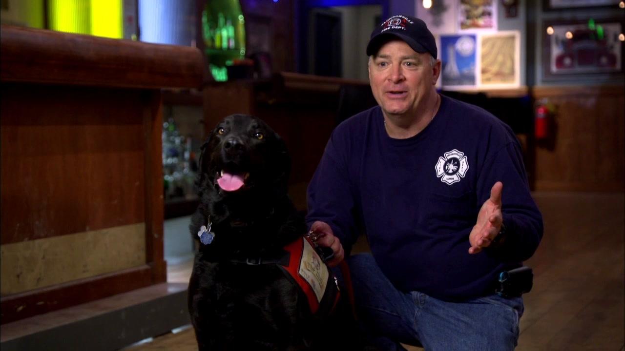 Chicago Fire: Lieutenant Todd Warrick And Smokey The Dog