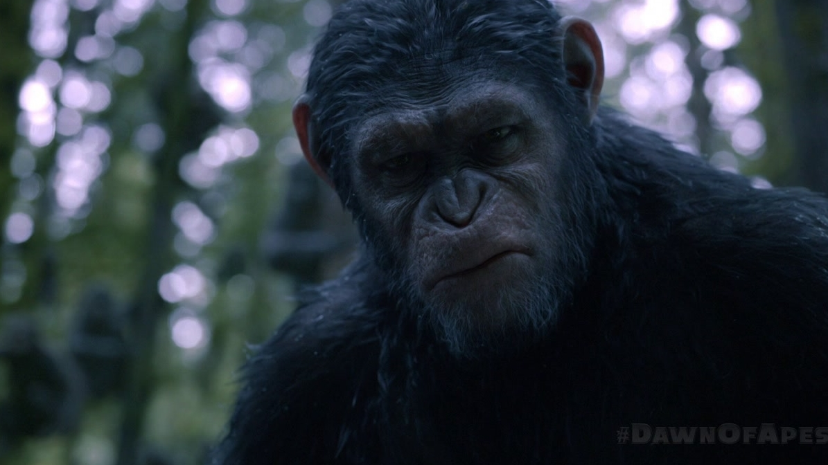 Dawn Of The Planet Of The Apes: Go