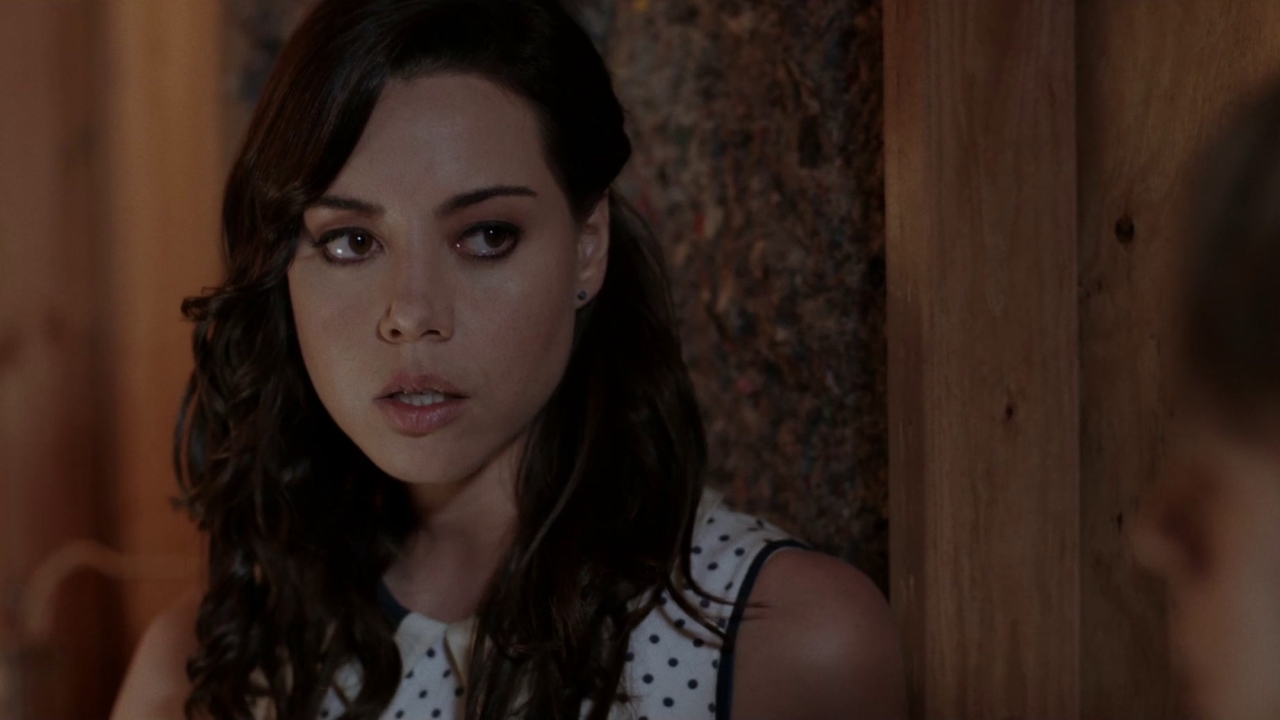 Life After Beth: In The Attic