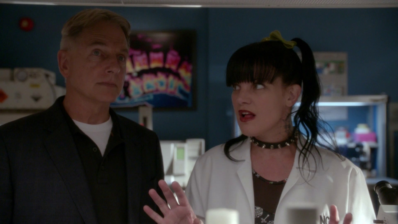 Ncis: I've Never Seen One Of These Before