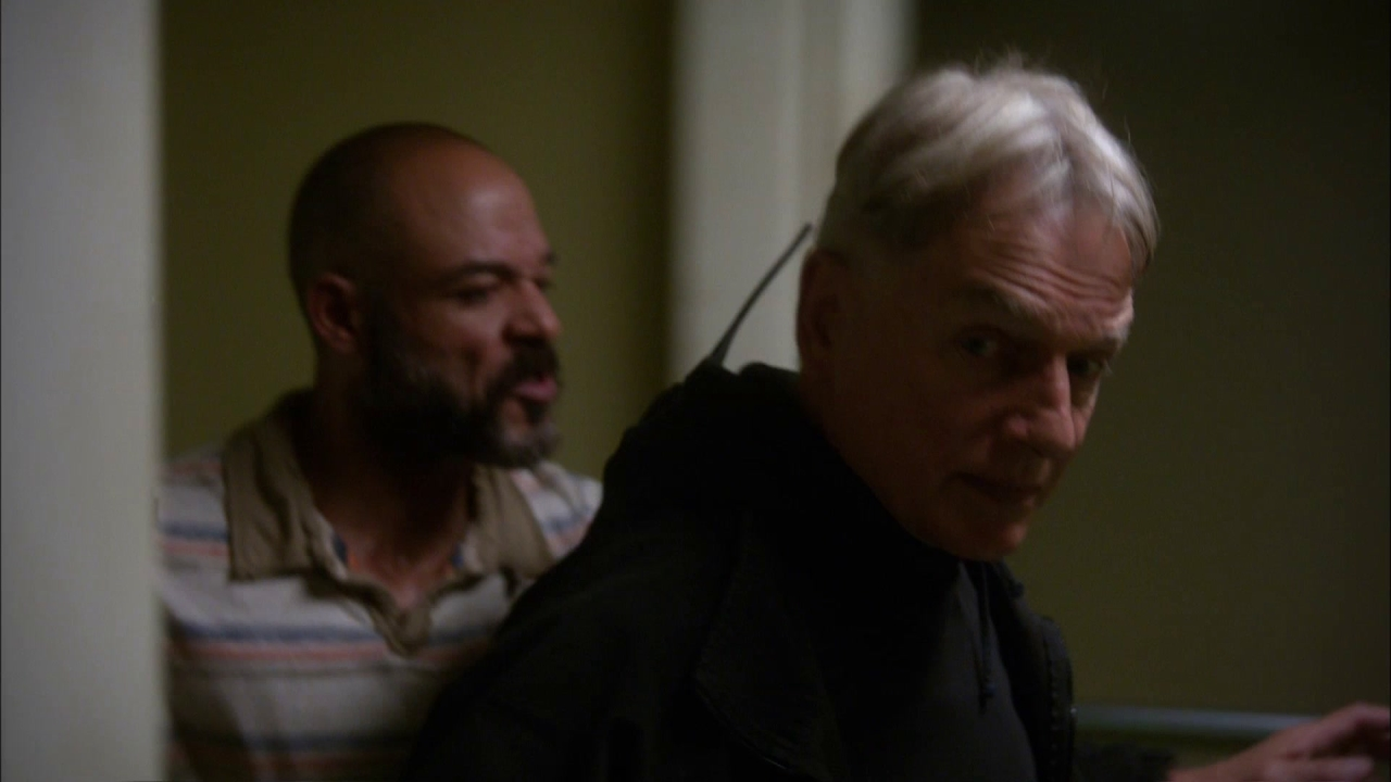 Ncis: Now You Have The Money?