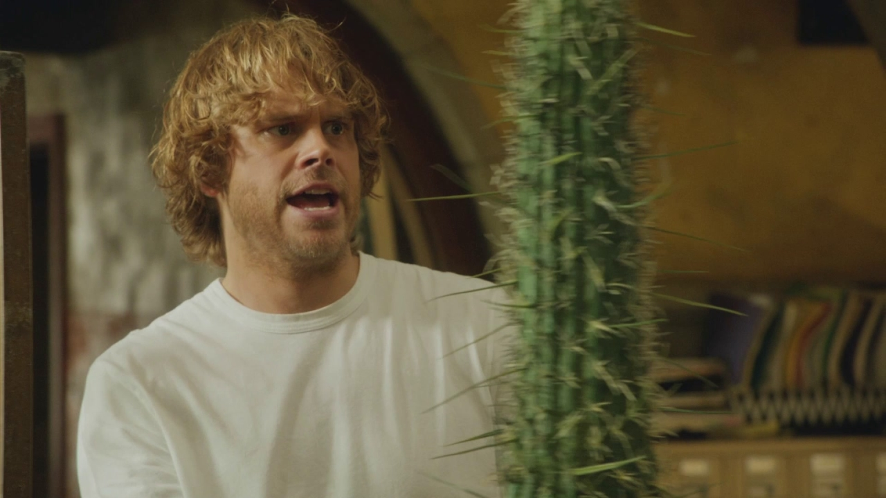 Ncis: Los Angeles: Good Morning Everyone