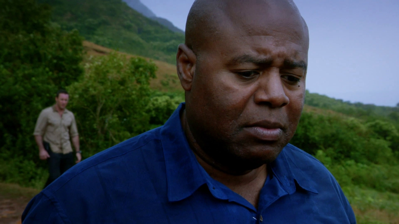 Hawaii Five-0: I Don't Think This Was An Accident