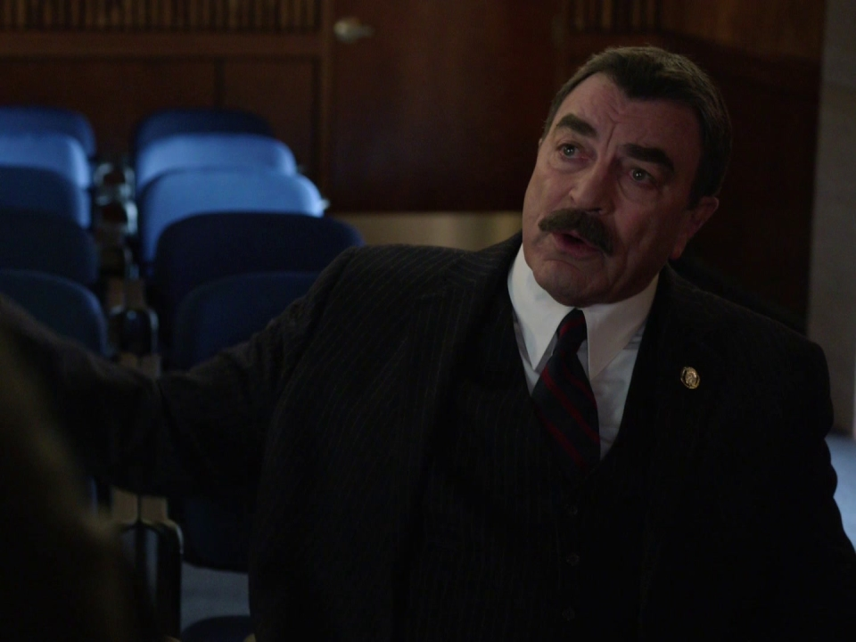 Blue Bloods: Payback