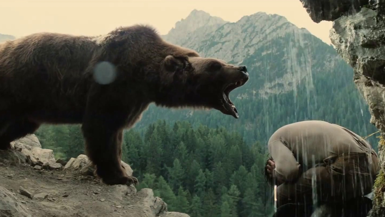 The Bear: Face To Face With The Bear
