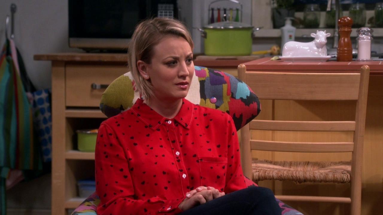 The Big Bang Theory: The Sin Closet