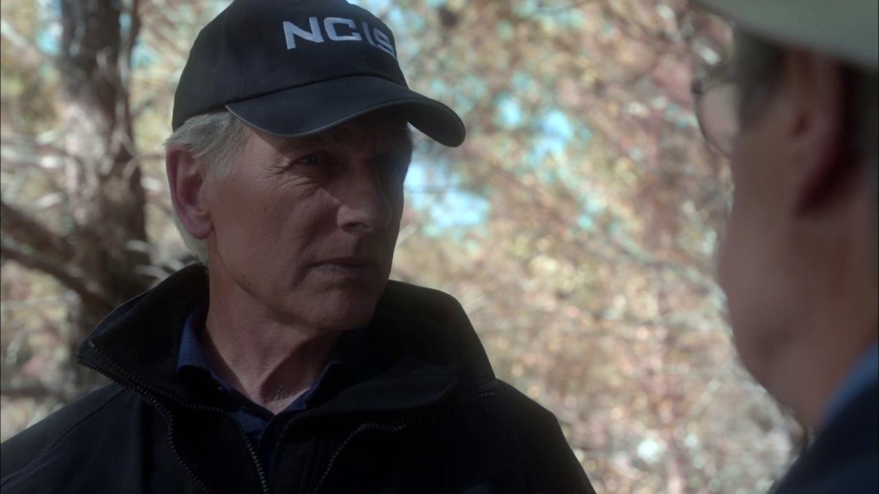 NCIS: 16 Years