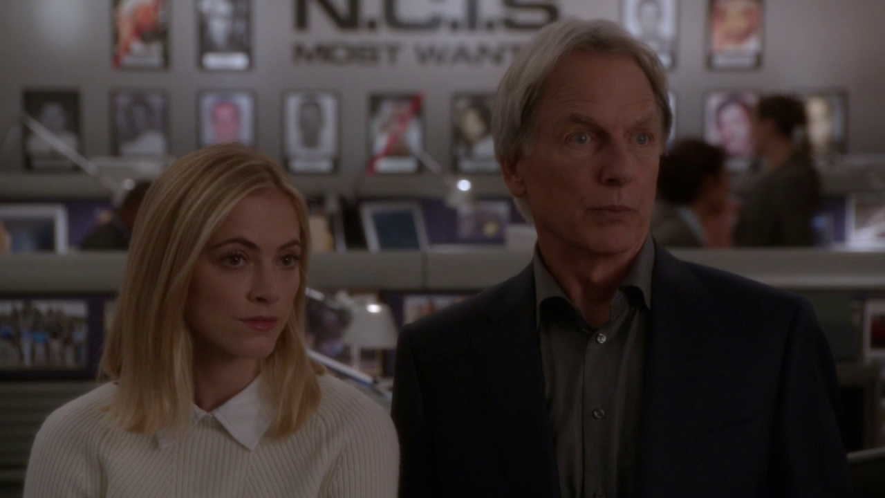 NCIS: Day in Court