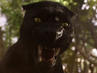 Image result for jungle book images 2016