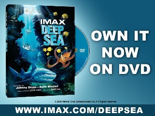 Deep Sea 3D Scene: Sea Spa