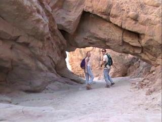 Phoenix Forgotten (Trailer 2)