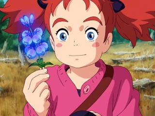 Mary And The Witch's Flower: Beautiful