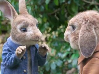 Peter Rabbit: Individual Talents