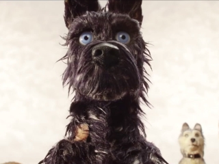 Isle Of Dogs: I Love Dogs (TV Spot)