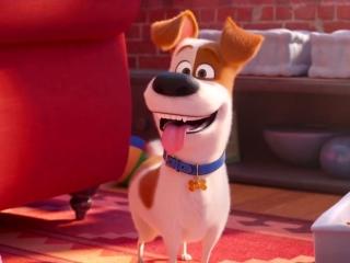 The Secret Life Of Pets 2: Max