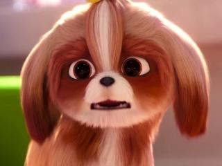 The Secret Life Of Pets 2: Daisy