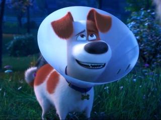 The Secret Life Of Pets 2 (Trailer 2)