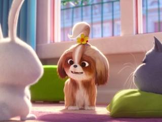 The Secret Life Of Pets 2: Character Pod-Tiffany Haddish/Daisy