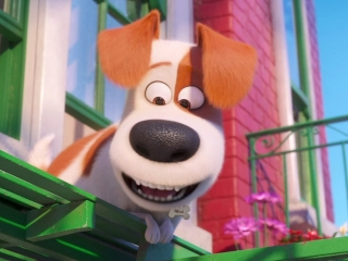 The Secret Life Of Pets 2: A Look Inside (Featurette)