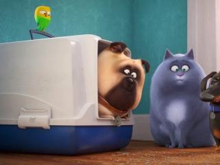 The Secret Life Of Pets 2: Character Pod-Bobby Moynihan/Mel