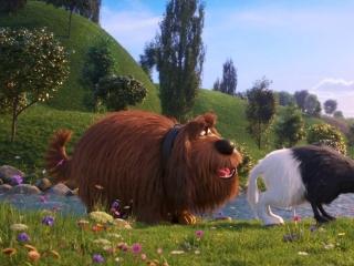 The Secret Life Of Pets 2: Character Pod-Eric Stonestreet/Duke