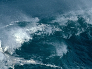 Aquarela: Ocean