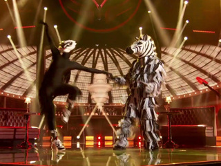 The Masked Dancer: Zebra Performs To Take You Dancing