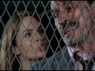 Prison Break: The Race Is On