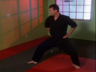 Scooby-Doo! And The Samurai Sword: Back Stances In Martial Arts