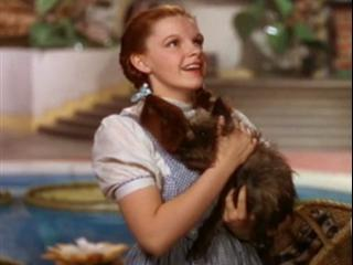The Wizard Of Oz 70th Anniversary Edition: Not In Kansas Anymore