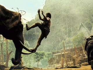 film ong bak elephant