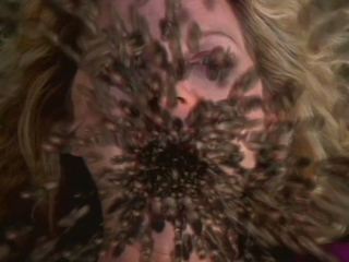 infested trailer 2002 video detective