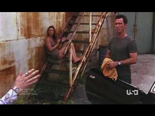 Burn Notice: Noble Causes