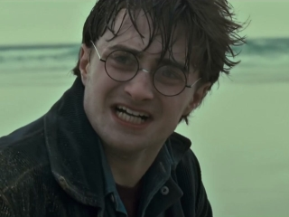 Harry Potter And The Deathly Hallows-Part 1 (On The Run)