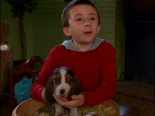 The Middle: I'm Lying