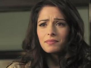 Fairly Legal: Season 1 (Bridges Promo)