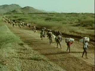 lost boys of sudan reviews metacritic