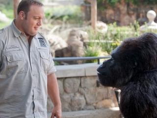 Zookeeper (Uk)