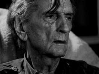 Harry Dean Stanton Partly Fiction