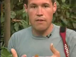 The Jeff Corwin Experience: Out On A Limb Scene: Leech Frog