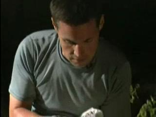 The Jeff Corwin Experience: Out On A Limb Scene: Bats!
