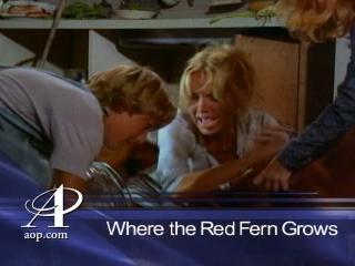 mama rotten tomatoes