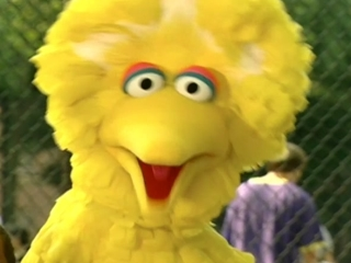 Sesame Street: What's The Name Of That Song?
