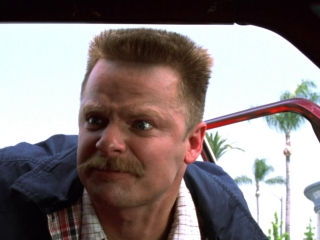 what movies did steve zahn play in